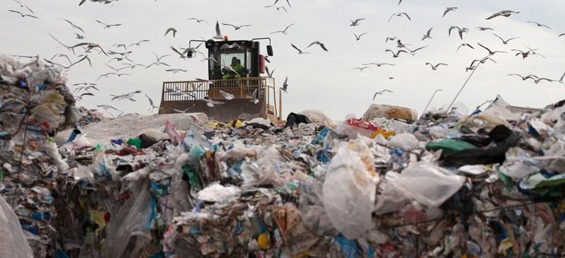 ゴミもコストも削減する意識が増えて一挙両得